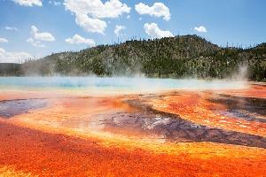 Yellowstone Natl Park