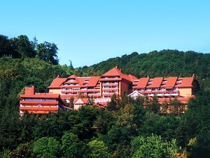 Goebels Hotel Rodenberg