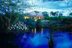 Finch Hatton's Camp