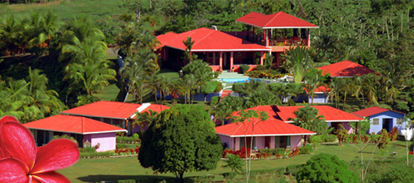 Hotel Lookout at Playa Tortuga